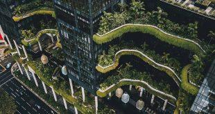 "art & architecture magazine on Instagram: ""PARKROYAL on Pickering Hotel design..."