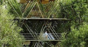 Architektur-Konzept: Ein flexibles Bambus-Hotel im Wald | KlonBlog